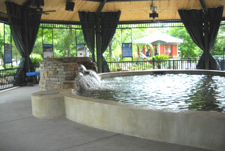 St. Louis Zoo Stingray Exhibit_2